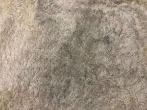 オキシクリーンする前のタオルの黒カビ 全体