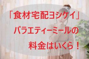 「ヨシケイ」バラエティーミールの料金はいくら