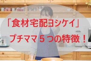 「ヨシケイ」プチママ5つの特徴