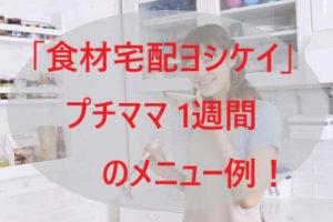「ヨシケイ」プチママ 1週間のメニュー例