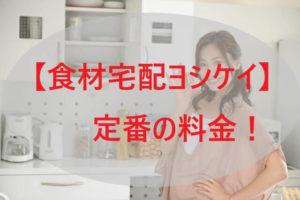 「ヨシケイ」定番の料金