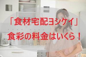 「ヨシケイ」食彩の料金はいくら