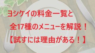 ヨシケイの料金一覧と全17種のメニューを解説!【試すには理由がある!】