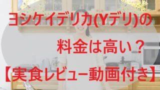 ヨシケイデリカ(Yデリ)の料金は高い?【実食レビュー動画付き!】