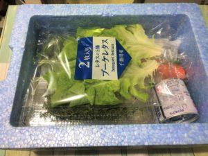 ヨシケイのクールBOXのフタを開ける