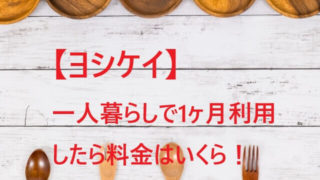 ヨシケイを一人暮らしで1ヶ月利用した料金は!1人前から注文できる!