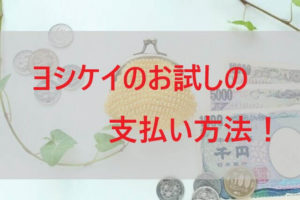 ヨシケイのお試しの支払い方法